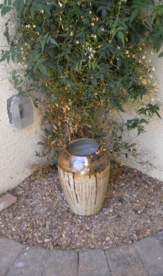 Large brown pot by vine